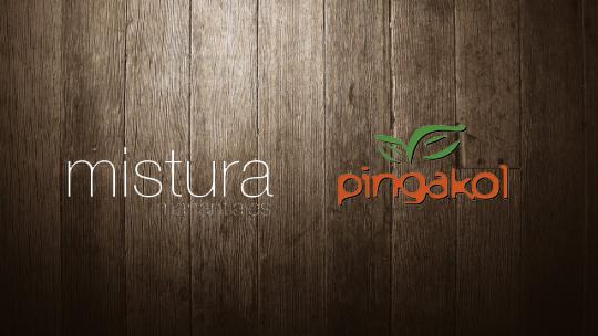 MISTURA & PINGAKOL - COVER